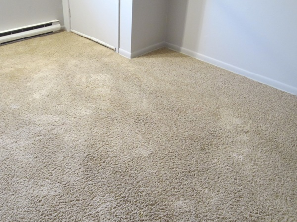 Carpet cleaning Bergen County NJ